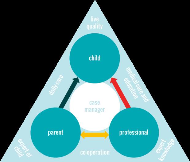 triangle of care