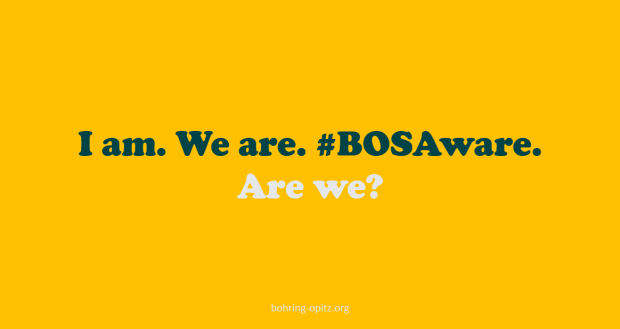 Are we BOSaware wp